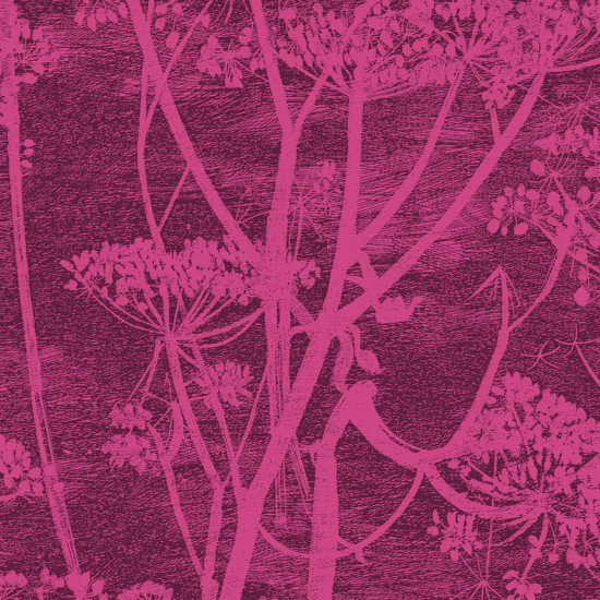 Cole and Son Cow Parsley Fabric - Velvet