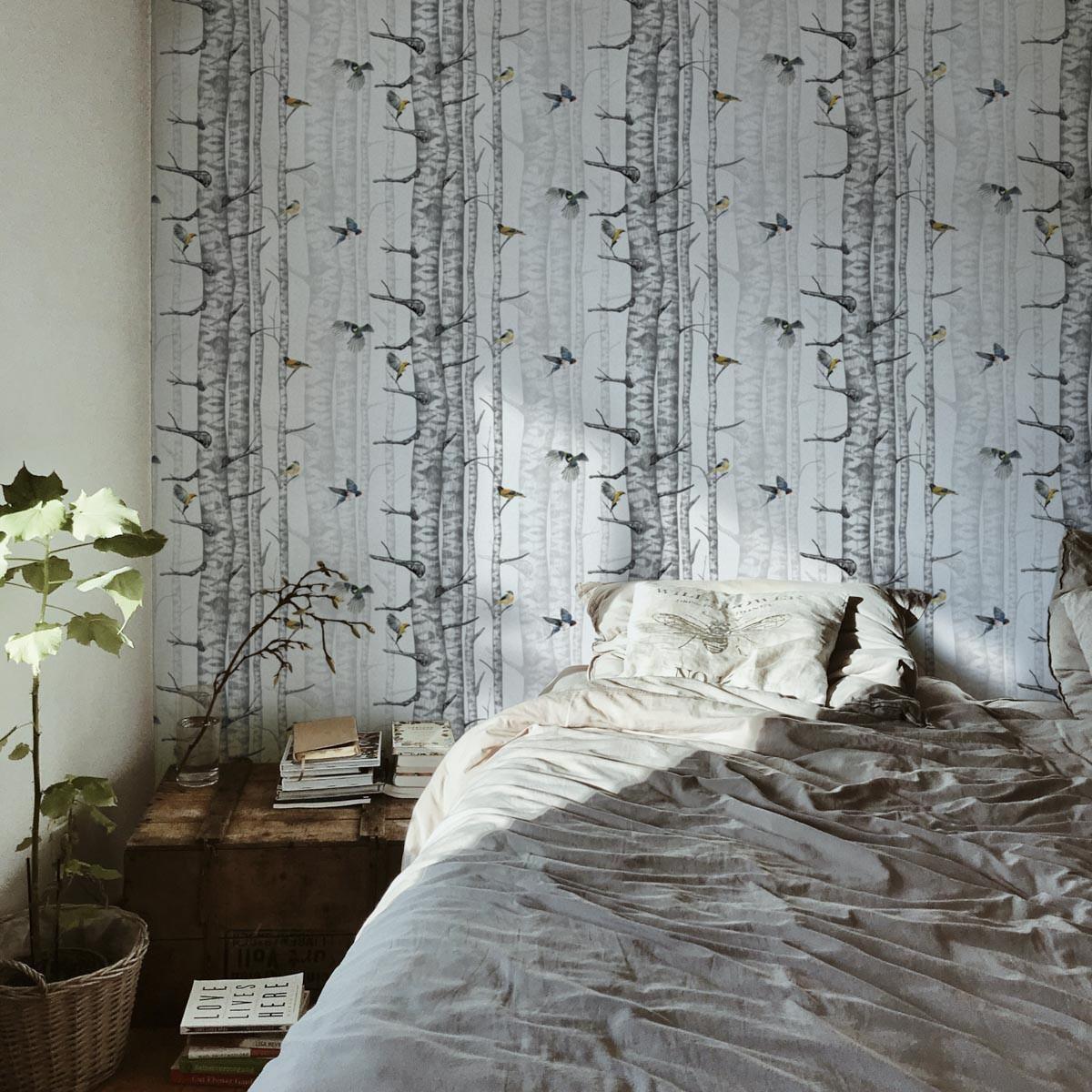 Coordonne Birch Trees Wallpaper