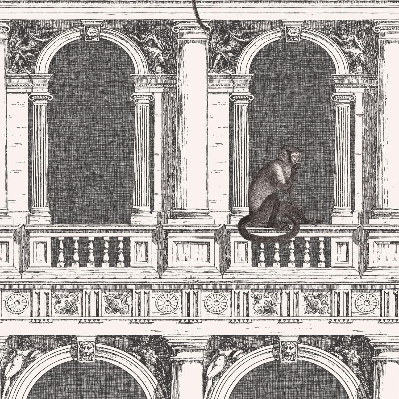 Carta Da Parati Fornasetti Mediterranea cole and son procuratie e scimmie wallpaper - fornasetti