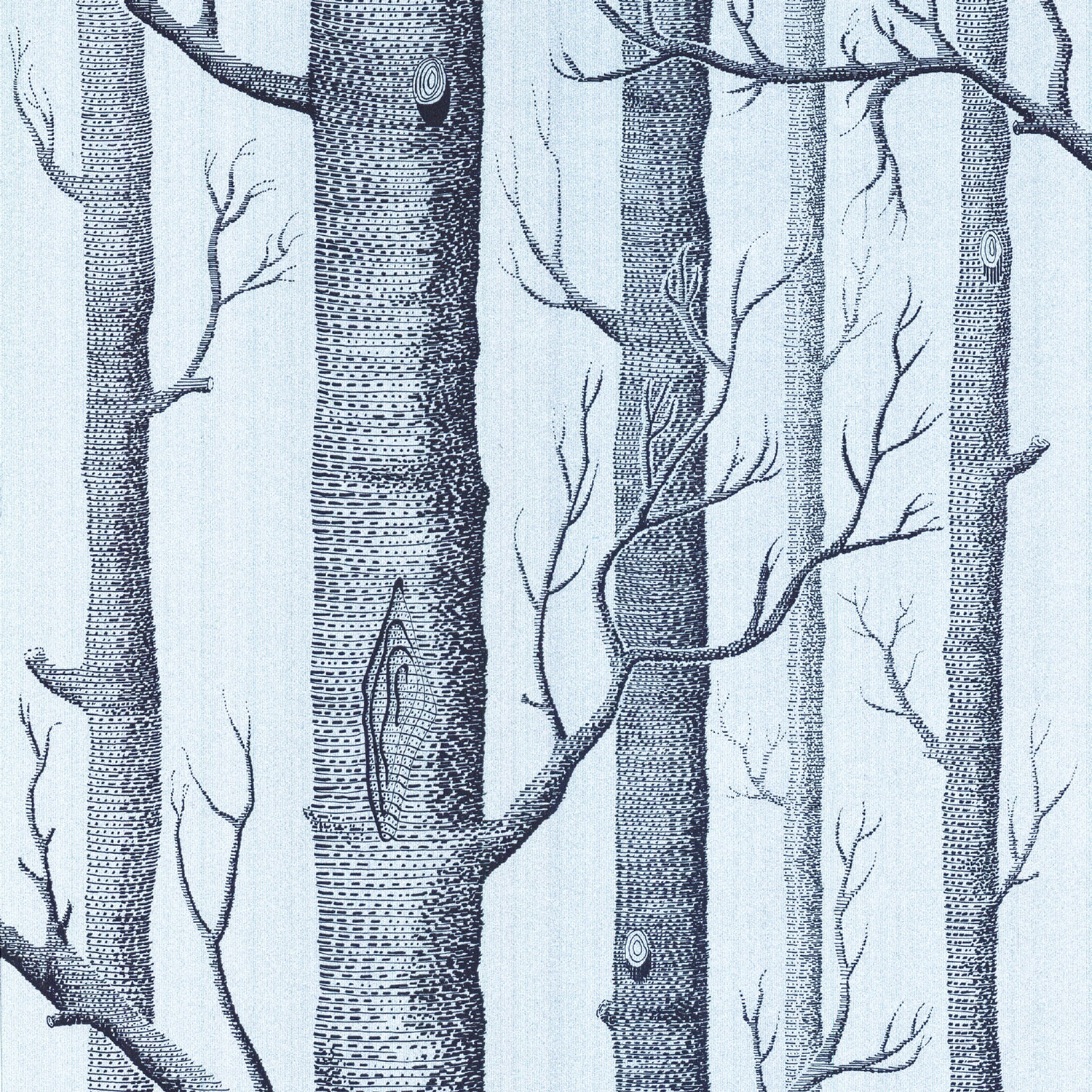 Cole And Son Woods cole and son woods wallpaper - new contempoarary ii