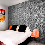 Feathr Stroke The Wallpaper by Chris van Rooyen