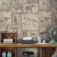 Mind The Gap Zooarchaeology Wallpaper