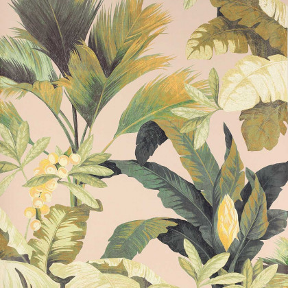 Manuel Canovas Salengro Wallpaper