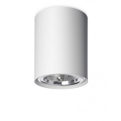 Vertigo Bird Naked C Ceiling Lamp - White