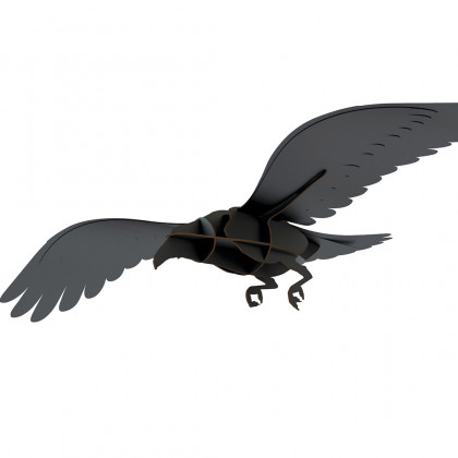 ibride Adam Raven - Black