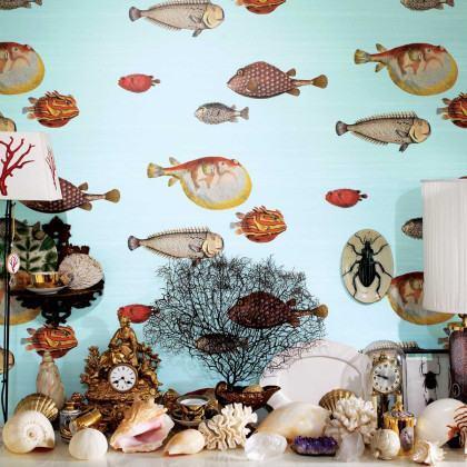 Cole and Son Acquario Wallpaper - Fornasetti