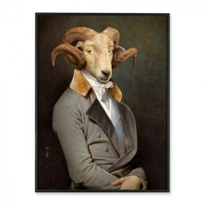Ibride Bel Ami Portrait