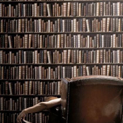 Antique Bibliotheque Books Wallpaper - Vintage