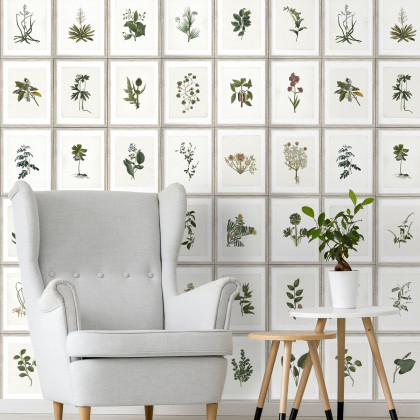 Mind The Gap Botany Wallpaper