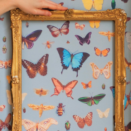 Ella Doran Bugs and Butterflies wallpaper