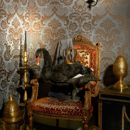 Cole and Son Carmen Wallpaper - Mariinsky Damask