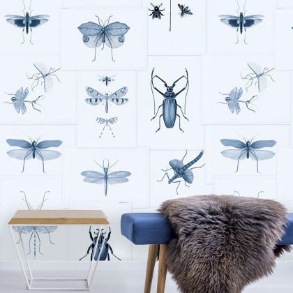 Mind The Gap Entomology Wallpaper - Blue