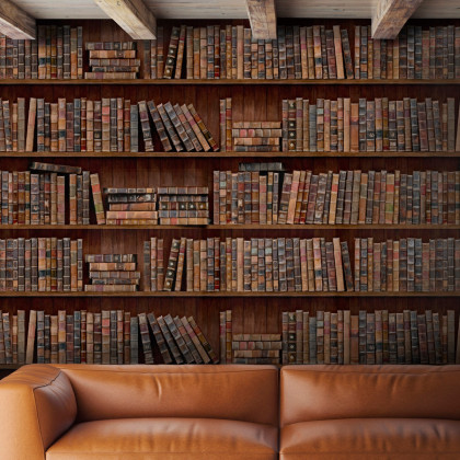 Mind The Gap Book Shelves Wallpaper